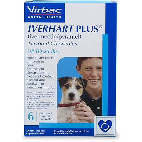 Iverhart Plus Chewable Tablets for Dogs 1 to 25 lbs , 6 Pack