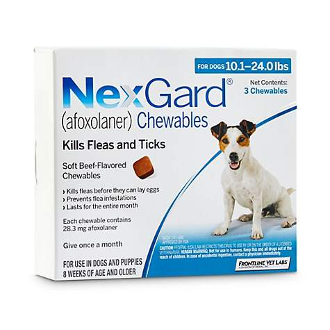 NexGard Chewables - Blue for Dogs 10 1 to 24 lbs , 3 Pack