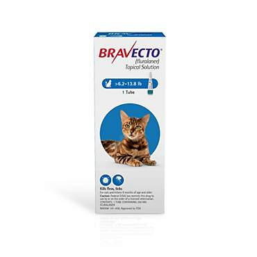Bravecto Topical Solution for Cats 6.2-13.8 lbs. - Blue