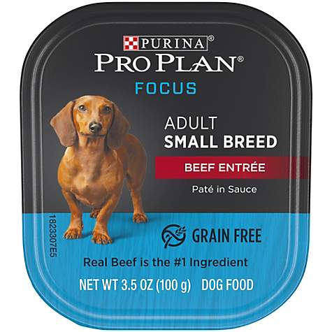 Purina Pro Plan Grain Free, High Protein Small Breed Pate Focus Beef Entree  in Sauce Wet Dog Food, 3 5 oz , Case of 12