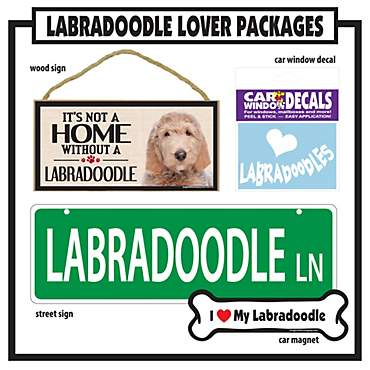 Imagine This Labradoodle Gift Package