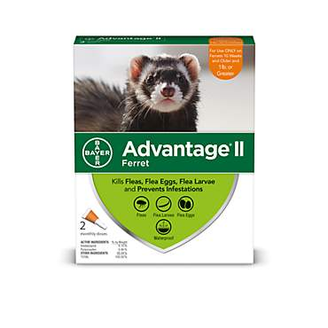 Advantage II Once-A-Month Topical Ferret