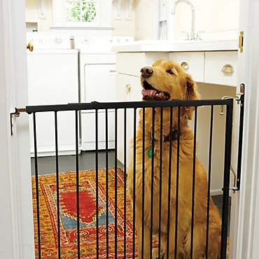 Cardinal Gates Any Angle Duragate Black Pet Gate
