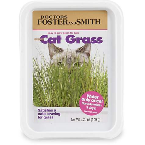 Drs  Foster and Smith Edible Cat Grass, 3 Packs of 5 25 oz