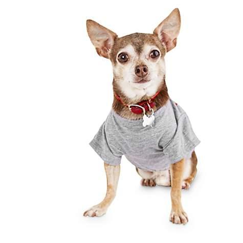 Bond & Co  Pride Rainbow Dog T-Shirt, XX-Small