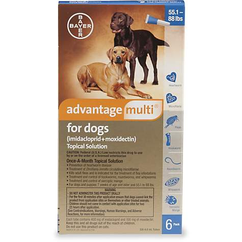 Advantage Multi Topical Solution for Dogs 55 1 to 88 lbs , 6 Pack