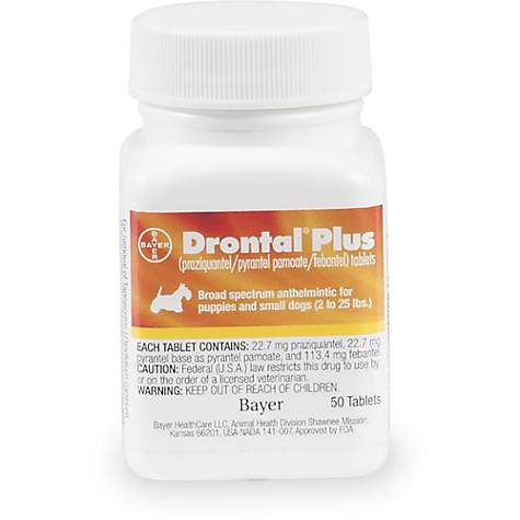 Drontal Plus Tablets for Small Dogs, 3 Count