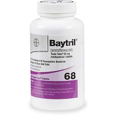 Baytril 68 mg Taste Tab Tablets
