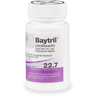 Baytril 22.7 mg Taste Tab Tablets