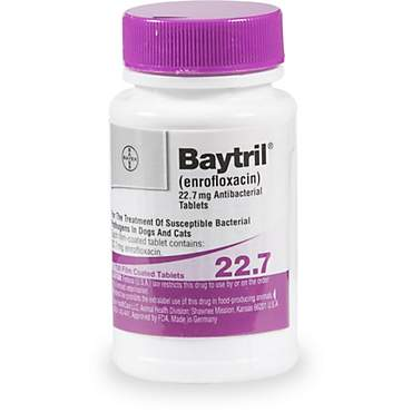 Baytril 22.7 mg Film-Coated Tablets