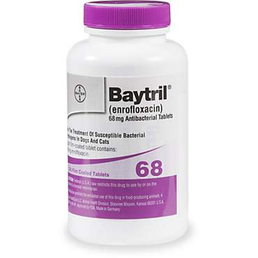 Baytril 68 mg Film-Coated Tablets