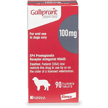 Galliprant 100 mg Flavored Tablets for Dogs