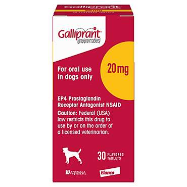 Galliprant 20 mg Flavored Tablets for Dogs