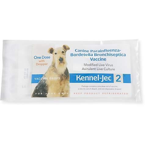 Kennel Jec 2-Way Intranasal Vaccine, Single Dose