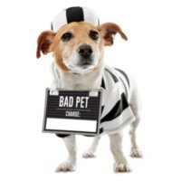 Bootique Prisoner Pet Costume X-Small Deals