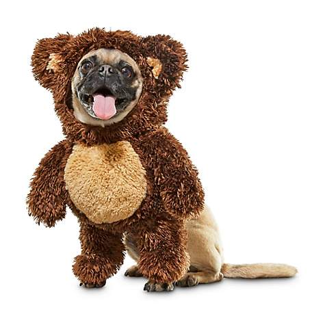 Bootique Teddy Bear Dog Costume, X-Small