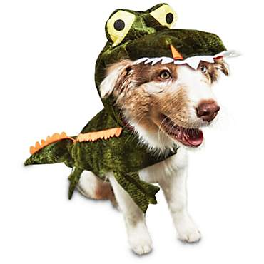 Bootique Later Gator Dog Costume