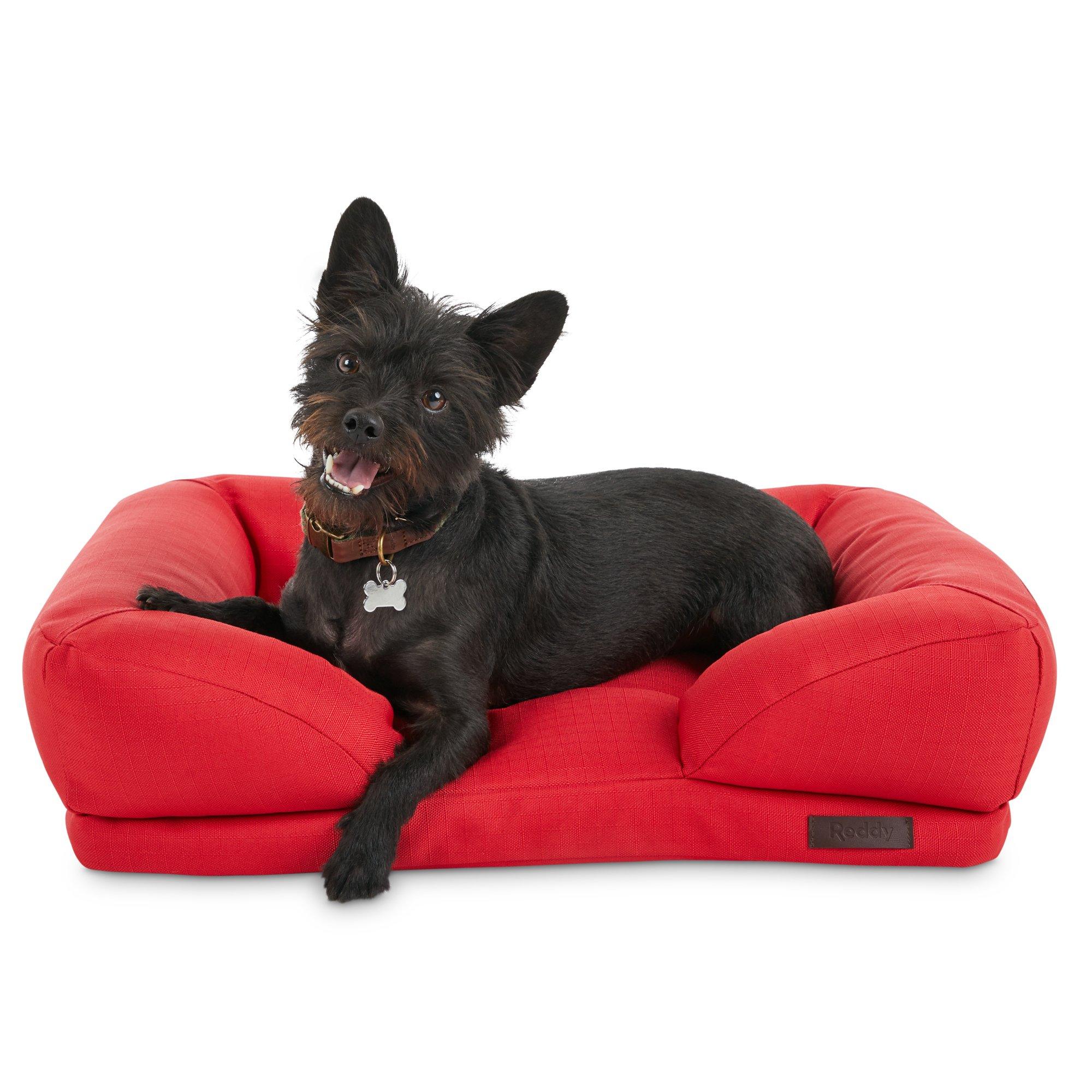 Wondrous Reddy Indoor Outdoor Red Dog Bed 24 L X 18 W Petco Machost Co Dining Chair Design Ideas Machostcouk