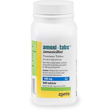 Amoxicillin 100 mg Tablets
