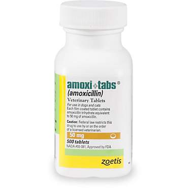 Amoxicillin 50 mg Tablets