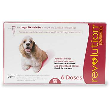 Revolution Topical Solution for Dogs 20.1-40 lbs. - Red