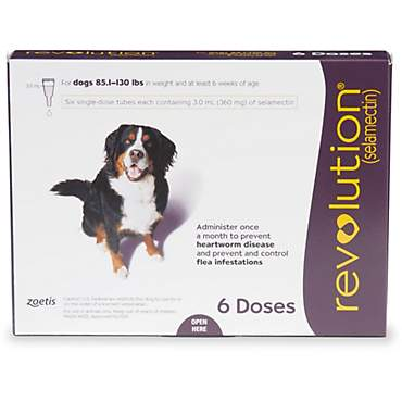 Revolution Topical Solution for Dogs 85-130 lbs. - Plum