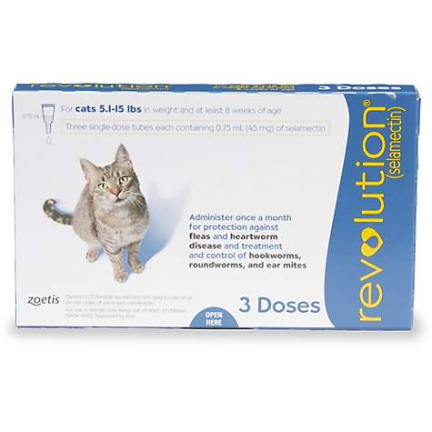 Revolution Topical Solution for Cats 5 1-15 lbs  - Blue, 3 Pack