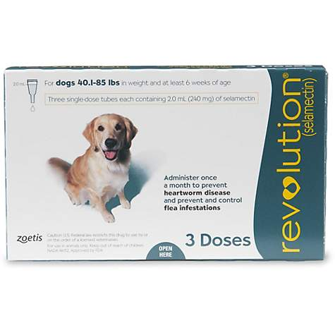 a7eef710eee5a Revolution Topical Solution for Dogs 40.1- 85 lbs. - Teal | Petco