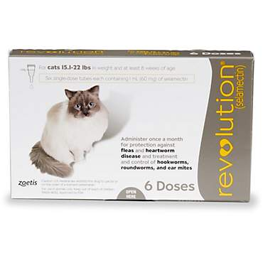 Revolution Topical Solution for Cats 15.1-22 lbs. - Taupe