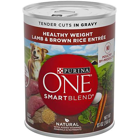 Purina ONE Wholesome Lamb & Brown Rice Entree Tender Cuts in Gravy Dog Food