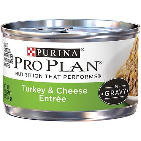 Purina Pro Plan Turkey & Cheese Entree in Gravy Adult Wet Cat Food