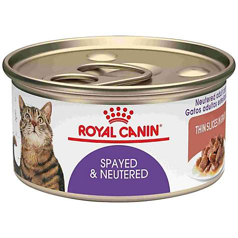Royal Canin Feline Health Nutrition Spayed/Neutered Thin Slices In Gravy Wet Cat Food