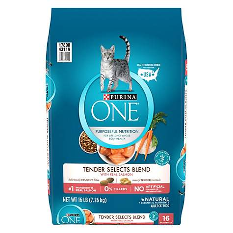 Purina ONE Tender Selects Blend With Real Salmon Adult Dry Cat Food