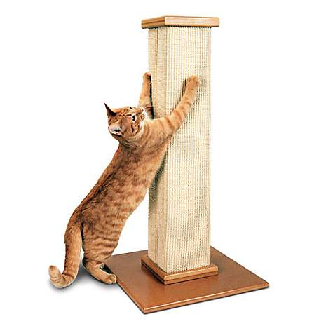 Smartcat Ultimate Scratching Post Petco