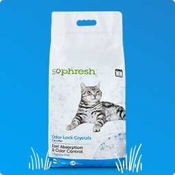 Cat Litter Up to 30% off - Shop Now