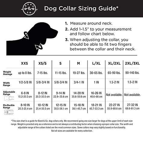 Bond & Co  Gray Suede Dog Collar, Large